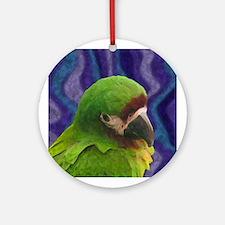 Severe Macaw Oil Ornament