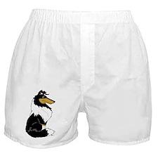 Rough Tricolor Collie Boxer Shorts