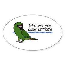 Calling Little Severe Macaw Oval Decal