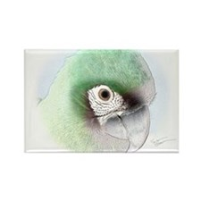 Digital Art Severe Macaw Rectangle Magnet