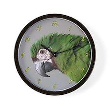 Havoc Says Hi Severe Macaw Clock