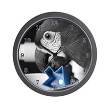 blue Severe Macaw Clock (Photography)