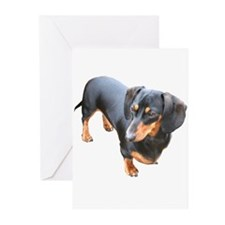 'Lily Dachshund Dog' Greeting Cards (Pk of 20)
