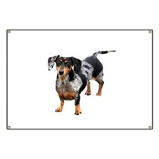Spotted Doxie Banner