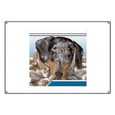 Speckled Dachshund Dogs Banner