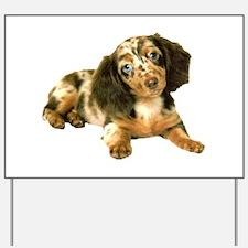 Shy_Low Puppy Yard Sign