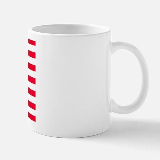 U.S. Kiwi Flag Mug