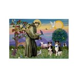 St Francis & 2 Tri Aussies Rectangle Magnet (10 pa