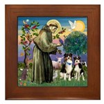St Francis & 2 Tri Aussies Framed Tile