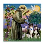 St Francis & 2 Tri Aussies Tile Coaster