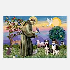 St Francis & 2 Tri Aussies Postcards (Package
