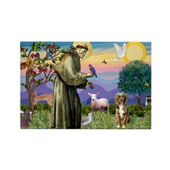 St Francis/Aussie (#5) Rectangle Magnet (10 pack)