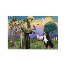 St Francis/Bernese Rectangle Magnet (10 pack)