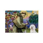 St Francis / Bichon Frise Rectangle Magnet