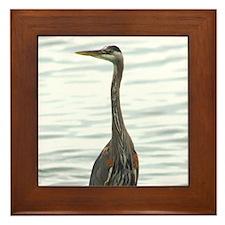 Great Blue Heron Bird Watcher photo Framed Tile