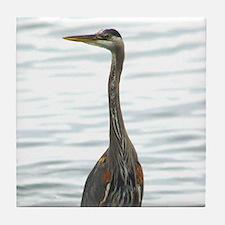 Great Blue Heron Bird Watcher photo Tile Coaster