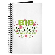 Big Sister of Multiples Journal