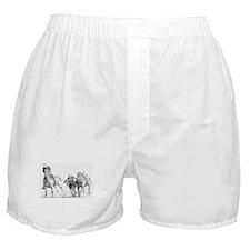 Unique Cowboys Boxer Shorts