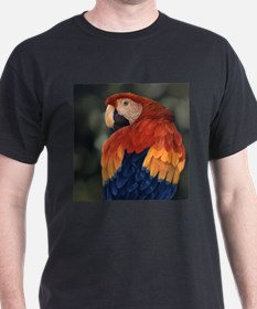 Tropical Cool T-Shirt