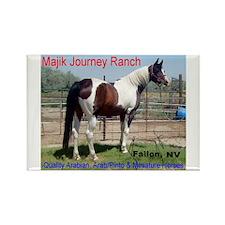 Mini Horse Rectangle Magnet