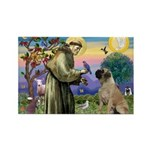 St Francis / Bullmastiff Rectangle Magnet (10 pack
