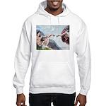 Creation/Yorkshire T Hooded Sweatshirt
