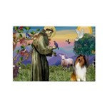 St. Francis & Collie Rectangle Magnet