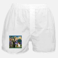 St. Francis & Collie Boxer Shorts