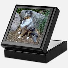 Rock Garden Sheltie Keepsake Box
