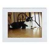 Cats Calendars