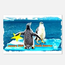 STAR Penguins S. America Logo- Postcards (Package
