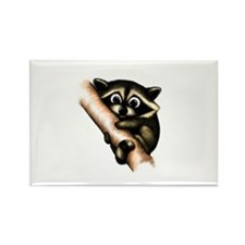 Raccoon In A Tree Rectangle Magnet