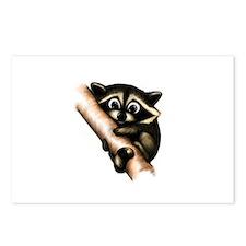 Raccoon In A Tree Postcards (Package of 8)