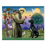 St Francis / Black G-Dane (N) Small Poster