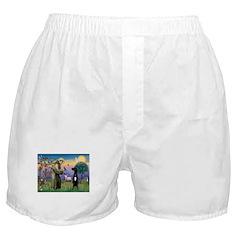 St Francis / Black G-Dane (N) Boxer Shorts