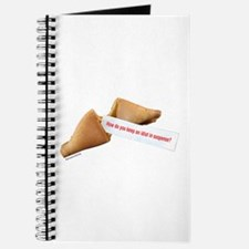 Funky Fortune 7 Journal
