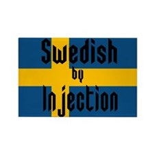 Swedish by Injection Rectangle Magnet