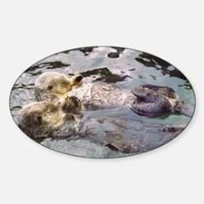 Sea Otter Love Oval Decal
