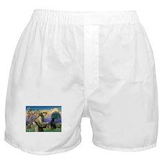 St. Fran/ Flat Coated Ret Boxer Shorts
