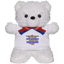 Tenterfield Terriers man's best friend Teddy Bear