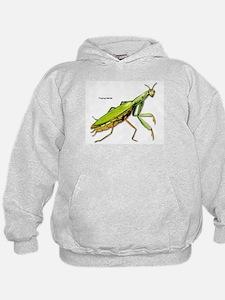 Praying Mantis Insect (Front) Hoodie