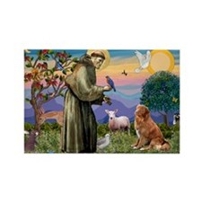 St Francis & Nova Scotia Rectangle Magnet (10 pack