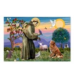 St Francis & Nova Scotia Postcards (Package of 8)