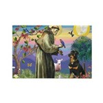 St Francis / Rottweiler Rectangle Magnet (10 pack)