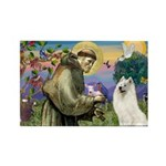 St Francis & Samoyed Rectangle Magnet