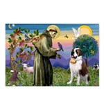 St. Francis/ St. Bernard Postcards (Package of 8)