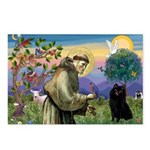 St Francis / Schipperke Postcards (Package of 8)