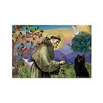 St Francis / Schipperke Rectangle Magnet (10 pack)