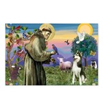 St Francis & Husky Postcards (Package of 8)