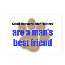 Small Munsterlander Pointers man's best friend Pos